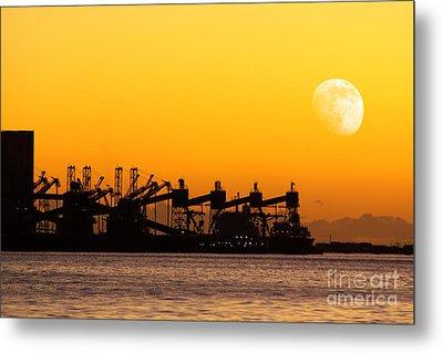 Cranes At Sunset Metal Print by Carlos Caetano