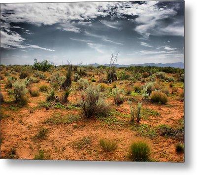 Desert Of New Mexico Metal Print by Thomas  MacPherson Jr