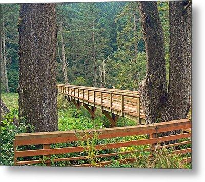 Discovery Trail Bridge Metal Print by Pamela Patch