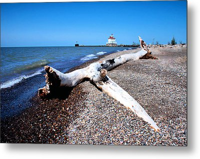 Metal Print featuring the photograph Driftwood At Erie by Michelle Joseph-Long