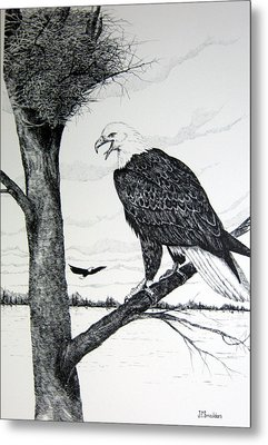 Eagle At Nest Metal Print by John Smeulders