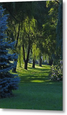 Metal Print featuring the photograph Early Morning by John Stuart Webbstock
