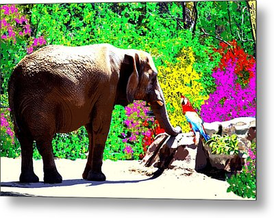 Elephant-parrot Dialogue Metal Print by Romy Galicia