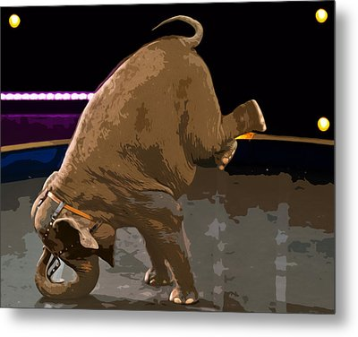 Metal Print featuring the photograph Elephant Perfomance At Circus by Susan Leggett