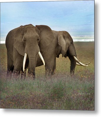 Elephants Of The Crater Metal Print by Joseph G Holland