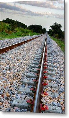 Empty Railway Metal Print by Carlos Caetano