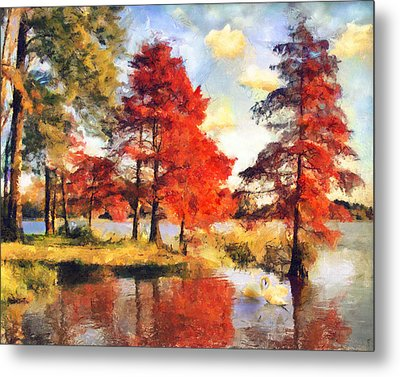 Fall At Swan Lake Metal Print by Jai Johnson