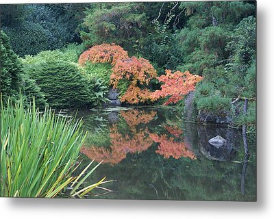 Metal Print featuring the photograph Fall Colors by Jerry Cahill