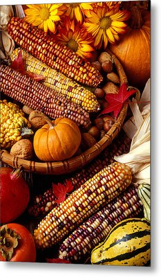 Fall Harvest Metal Print by Garry Gay