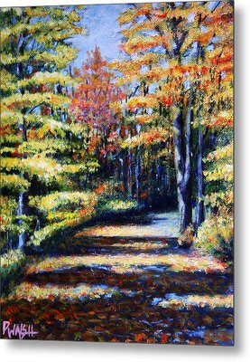Fall Path Metal Print by Paul Walsh