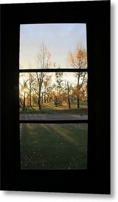 Fall Through The Window Metal Print by Ellery Russell