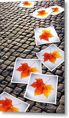 Fallen Autumn  Prints Metal Print by Carlos Caetano