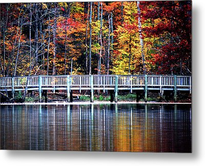 Metal Print featuring the photograph Falling Up by Linda Mesibov