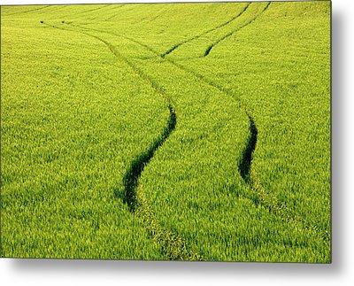 Farm Tracks Metal Print by Mike  Dawson
