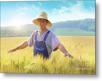 Farmer Checking Put His Crop Of Wheat Metal Print by Sandra Cunningham
