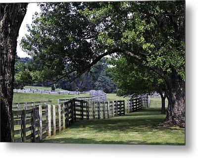 Farmland Shade Appomattox Virginia Metal Print by Teresa Mucha