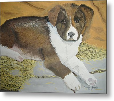 Metal Print featuring the painting Fat Puppy by Norm Starks