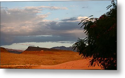 First Desert Light Metal Print