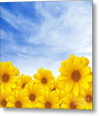 Flowers Over Sky Metal Print by Carlos Caetano