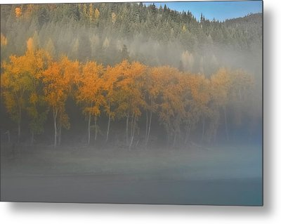 Foggy Autumn Morning Metal Print by Albert Seger