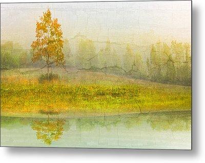 Foggy Meadow Metal Print by Debra and Dave Vanderlaan