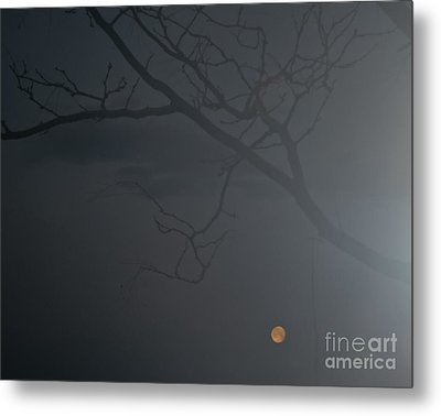 Foggy Morn In Fort Collins Metal Print by Harry Strharsky