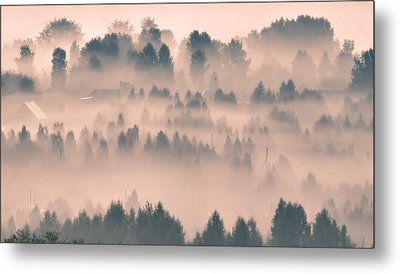 Foggy Morning 21 Metal Print