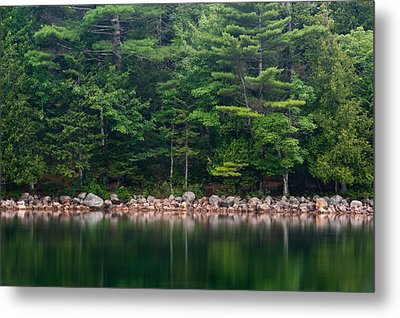 Forest At Jordan Pond Acadia Metal Print