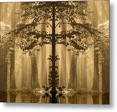Forest Reflection Metal Print by Odon Czintos