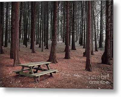 Forest Table Metal Print by Carlos Caetano