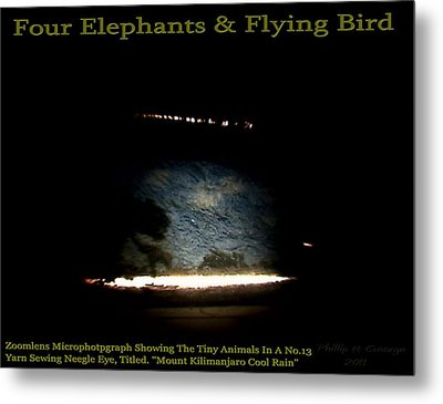 Four Elephants And Flying Bird  Metal Print by Phillip H George