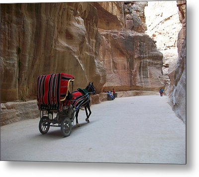 Free Ride Metal Print by Munir Alawi