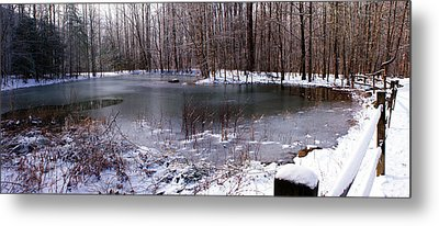Metal Print featuring the photograph Frozen Head Pond by Paul Mashburn