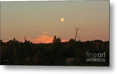 Full Moon Rising Metal Print by Terri Mills