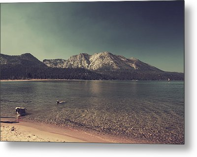 Fun At The Lake Metal Print by Laurie Search