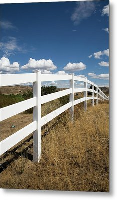 Galloping Fence Metal Print by Peter Tellone