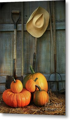 Garden Tools In Shed With Pumpkins Metal Print by Sandra Cunningham