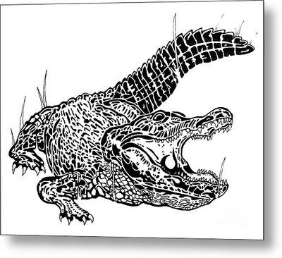 Gator Feed Metal Print by Jack Norton