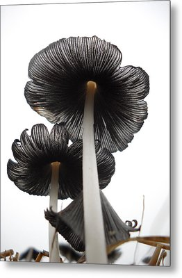 Giant Mushrooms In The Sky Metal Print