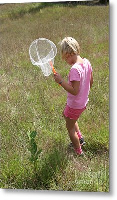 Girl Collecting Insects In A Meadow Metal Print by Ted Kinsman