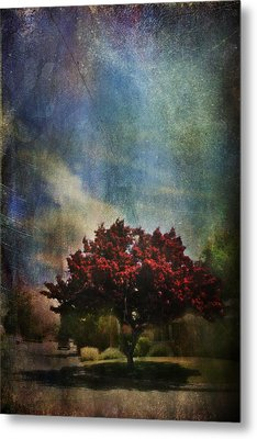 Glory Metal Print by Laurie Search