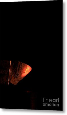 Glowing Lime Limelight Metal Print by Ted Kinsman
