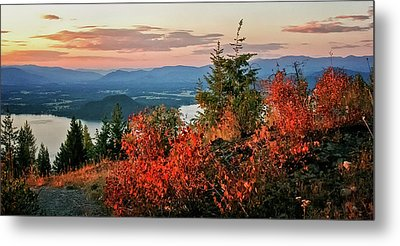 Metal Print featuring the photograph Gold Hill Sunset by Albert Seger