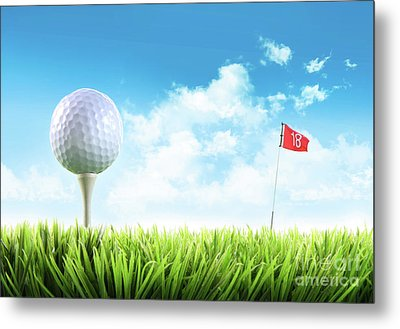 Golf Ball With Tee In The Grass  Metal Print by Sandra Cunningham