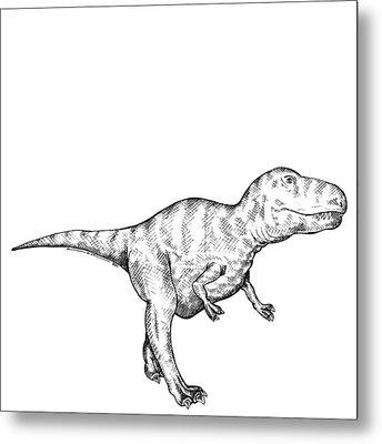 Gorgosaurus - Dinosaur Metal Print by Karl Addison