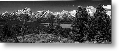 Metal Print featuring the photograph Grand Tetons by Dan Wells