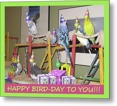 Happy Bird-day Metal Print by Kimberly Mackowski