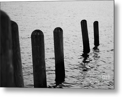 Metal Print featuring the photograph Harbor Ties by Tony Cooper