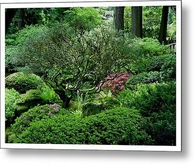 Metal Print featuring the photograph Hiding In A Sea Of Green by Frank Wickham