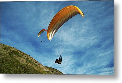 Metal Print featuring the photograph High Flyers by Lorraine Devon Wilke